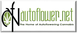 Autoflower.net is an awesome Forum for cannabis growers with great marijuana guides