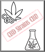 High CBD Cannabis Strains