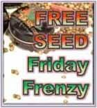 Free Feminized Seeds Friday Frenzy from 10:00 to 12:00 get Free Marijuana Seeds - Just Pay for Postage