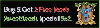 2 Free Marijuana Seeds when you buy any 5 pack of Sweet Seeds - only while promo packs last